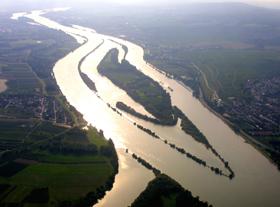 Rhein im Sonnenlicht-Internet.jpg